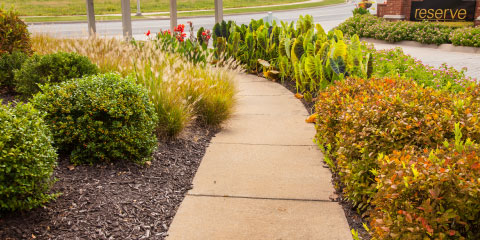 front landscaping design for subdivisions